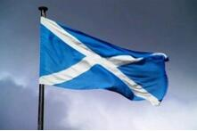 Highd Quality Customized Scotland National Flags for Sale